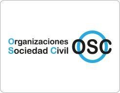 LAS ORGANIZACIONES DE LA SOCIE...